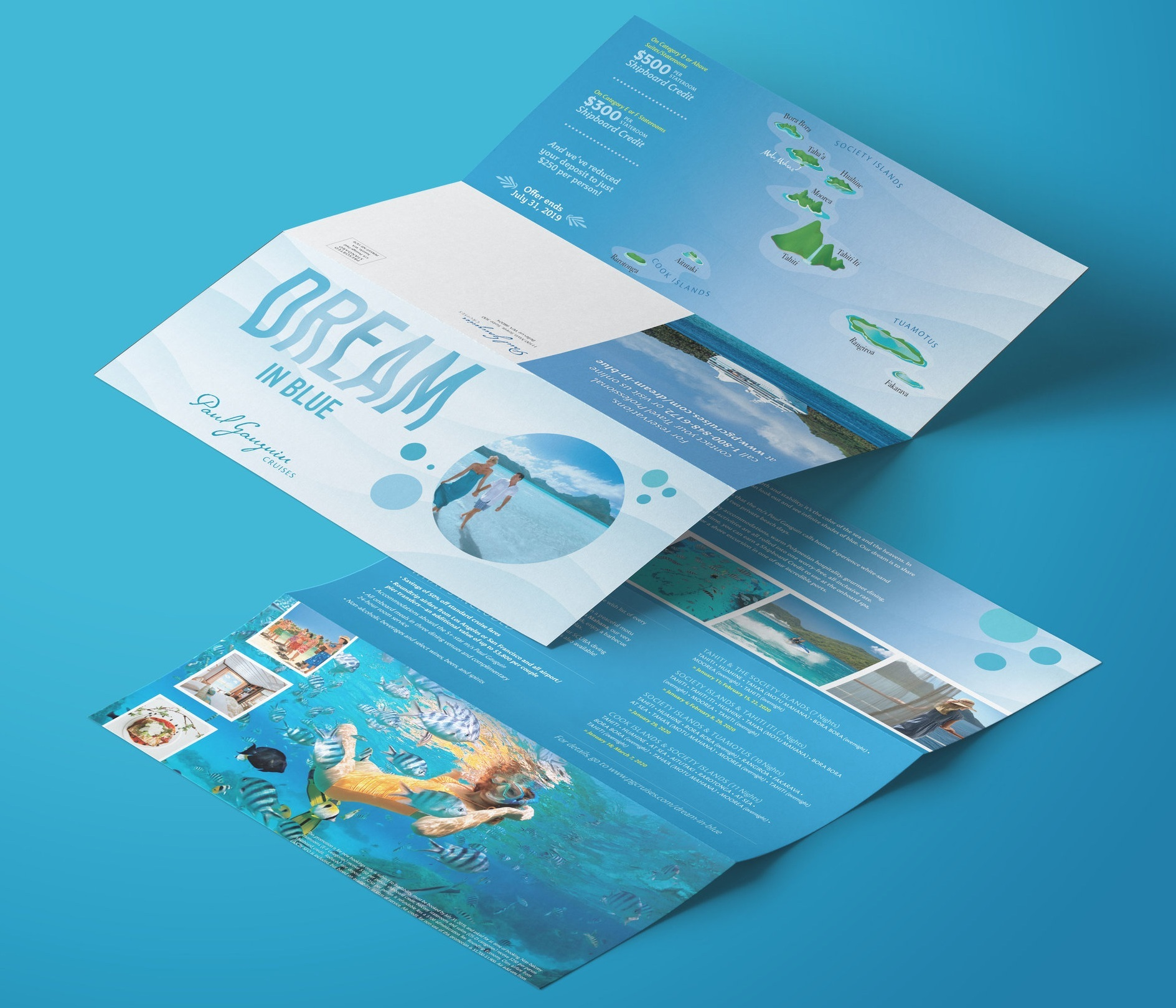 Dream In Blue Tri-Fold-Mockup.jpg