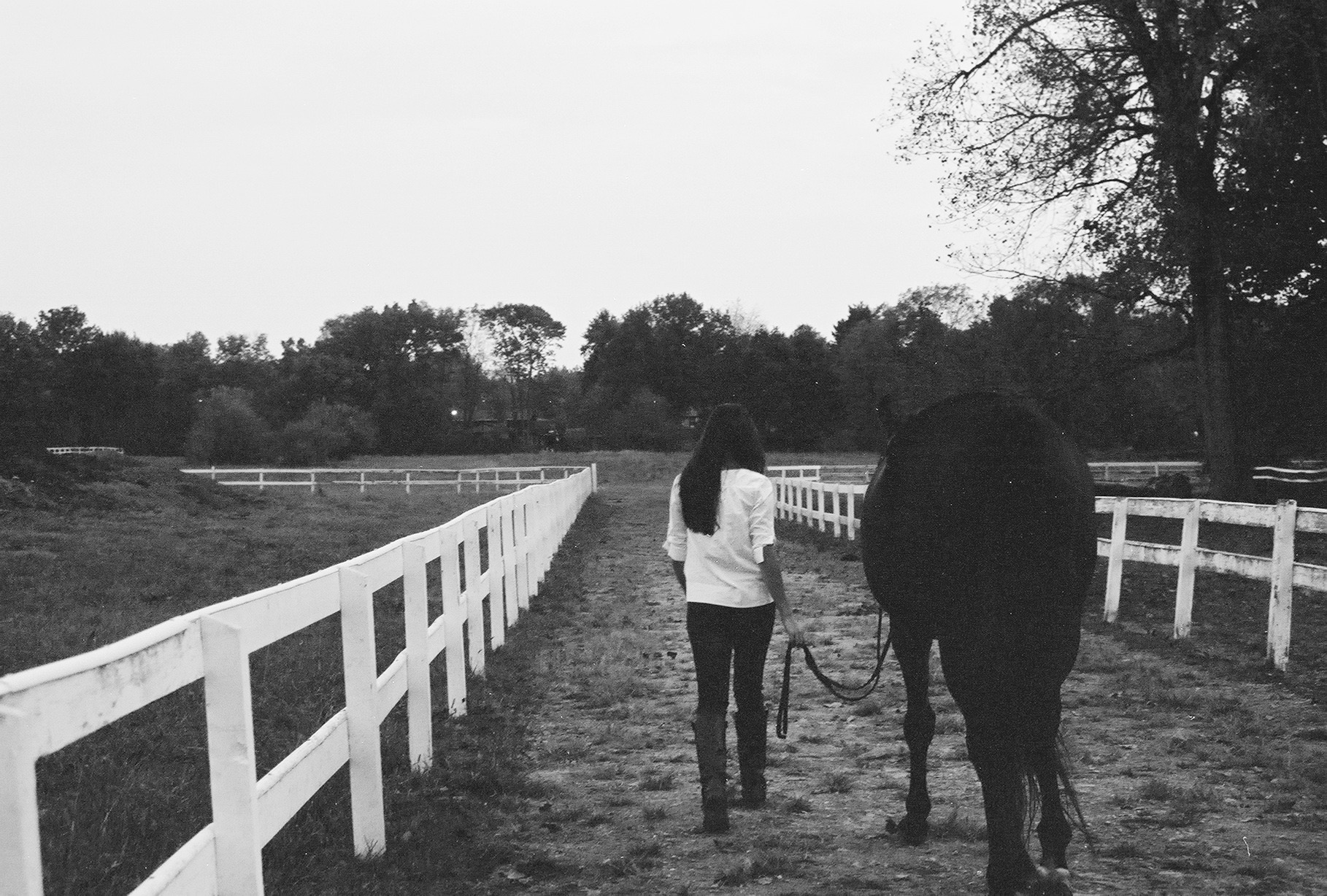 Julie's daughter, Madeline Bova, walking her horse Cameroon at the barn.