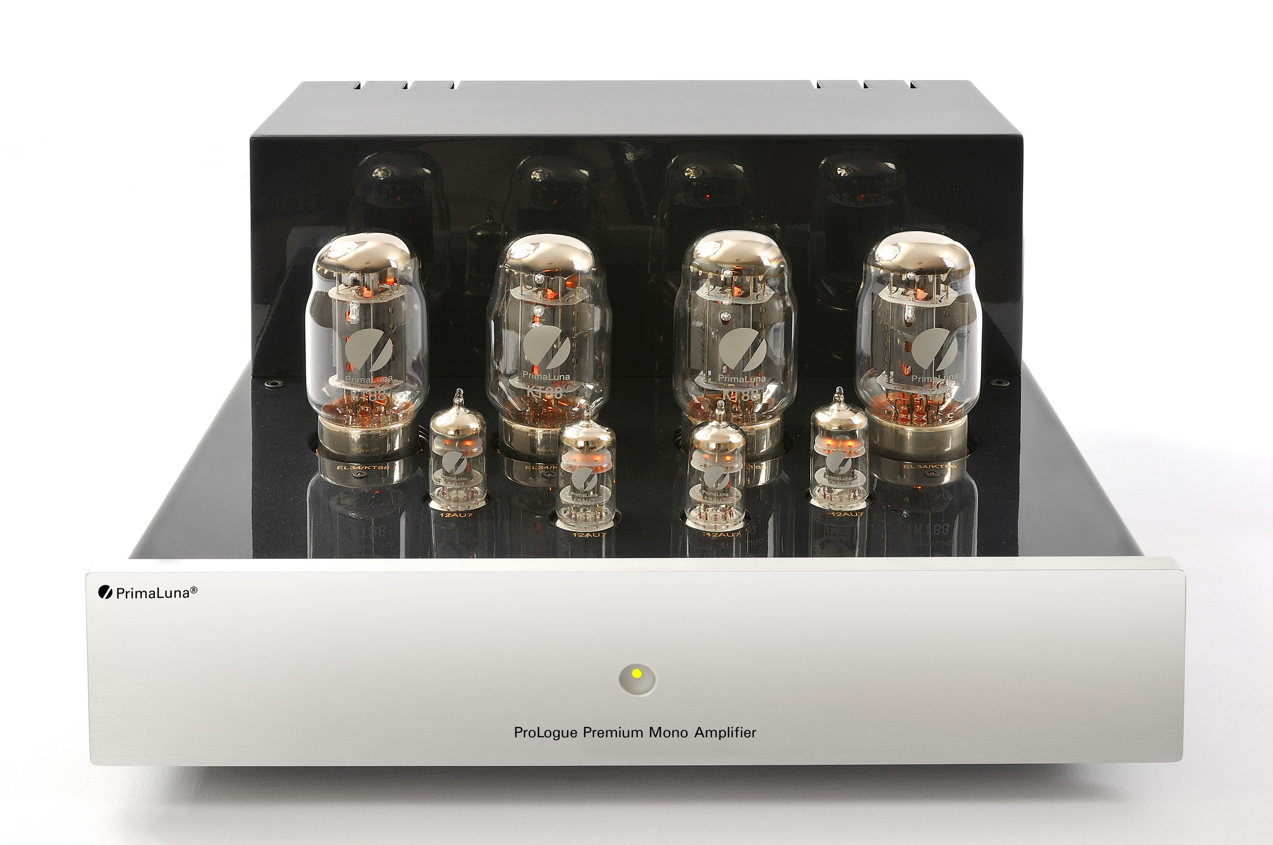 Prologue Premium Mono Amplifier - silver - front with no cover - HR - JPG.jpg