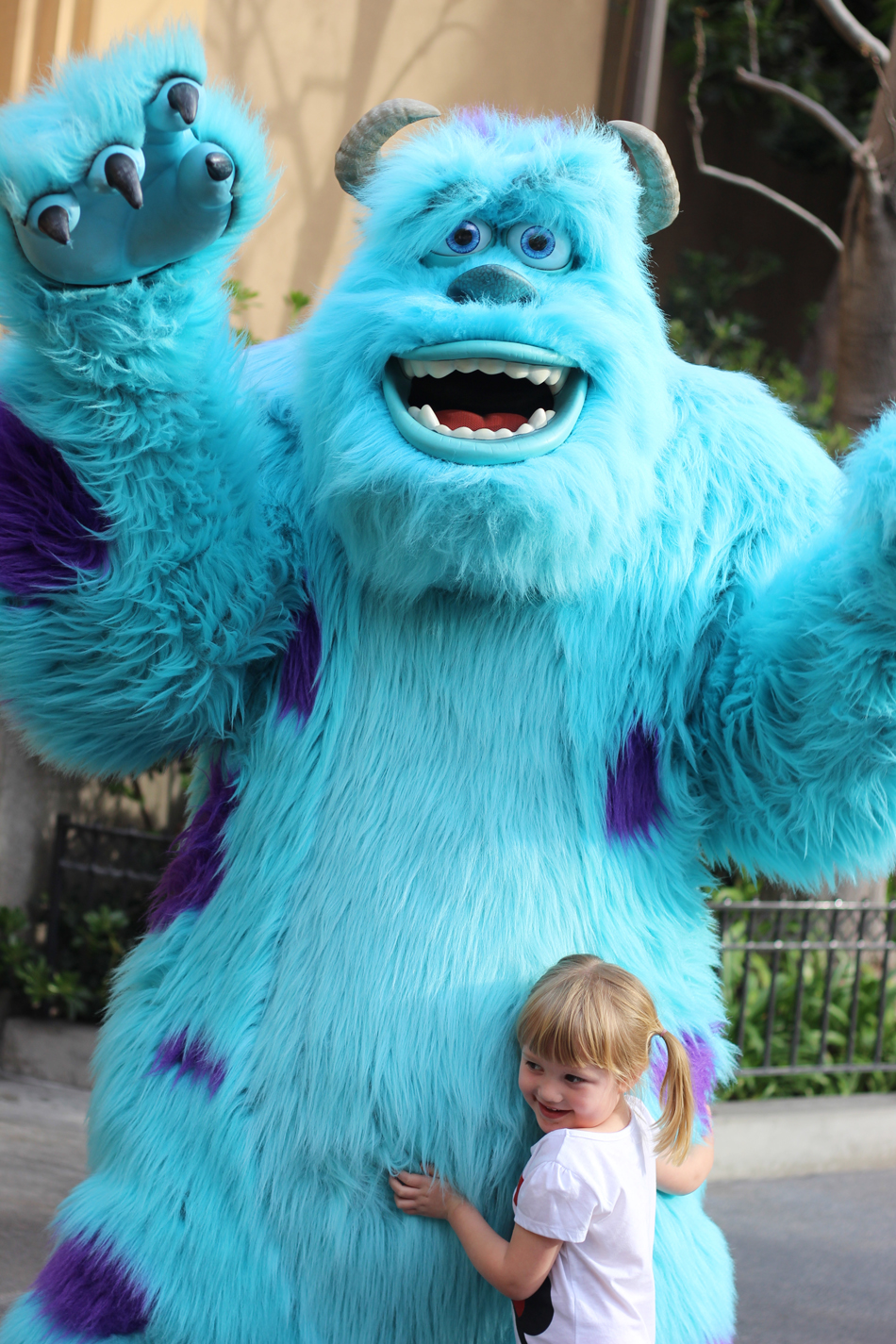 Forget the princesses, my girl loved Sully.