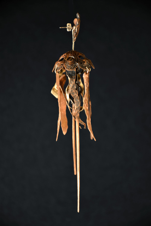 jellyfish_compressed.jpg