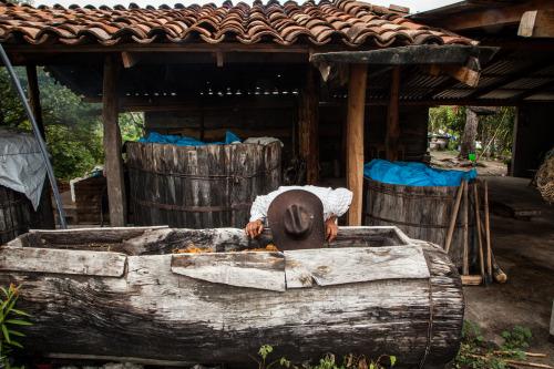 Tío Rey's Fermentation Tanks