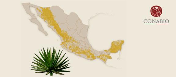 *Map taken from CONABIO website