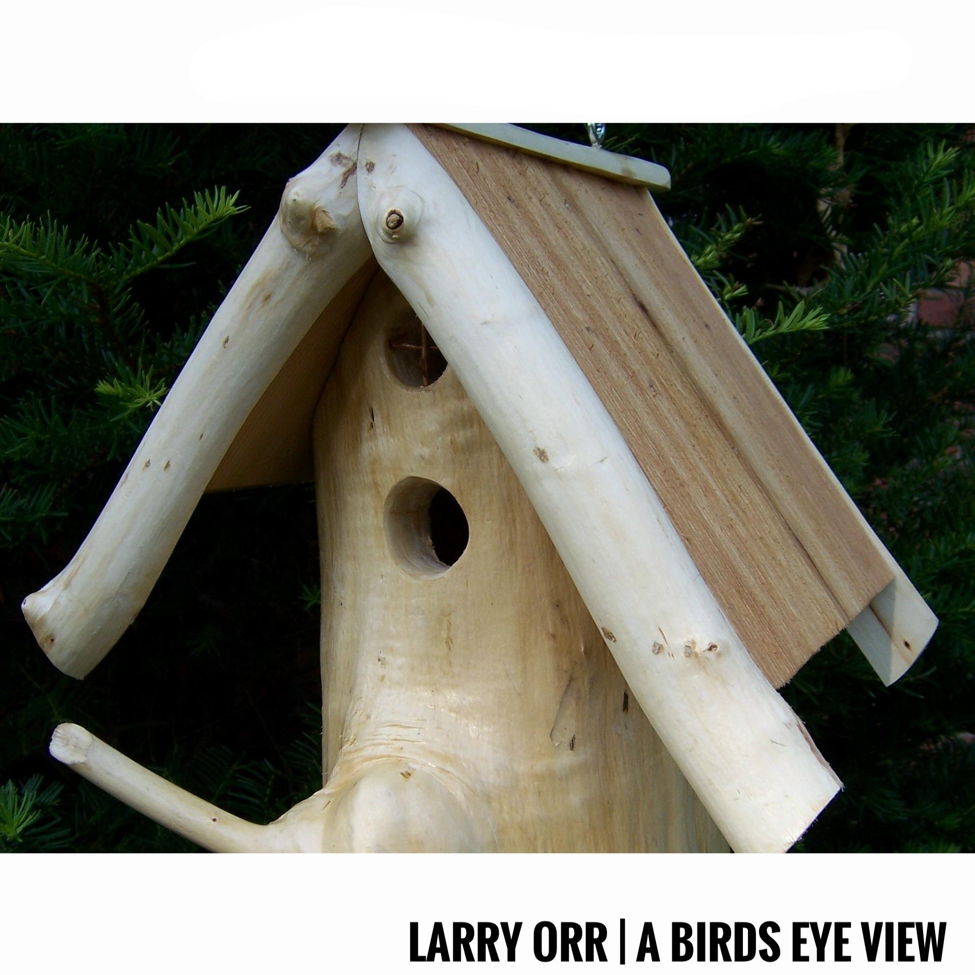 Larry Orr | A Birds Eye View
