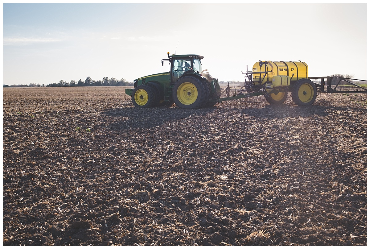 tractor spraying corn field