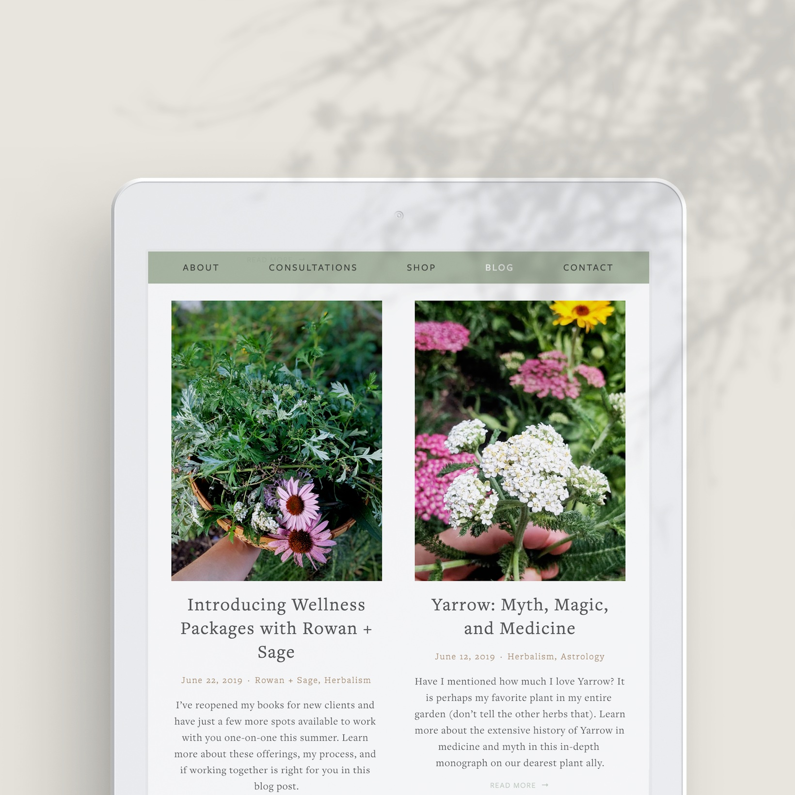Natural_Stationary_by_NewTropical.jpg