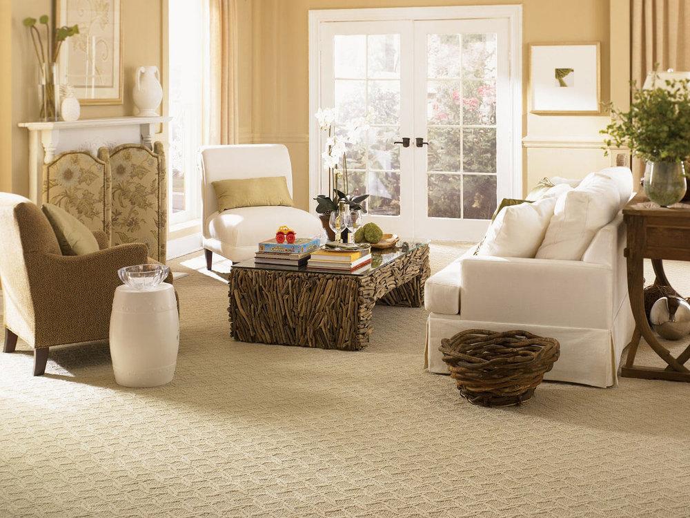 Green Carpet Cleaning A Magic Wand