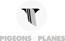 pnp_logo_250.png