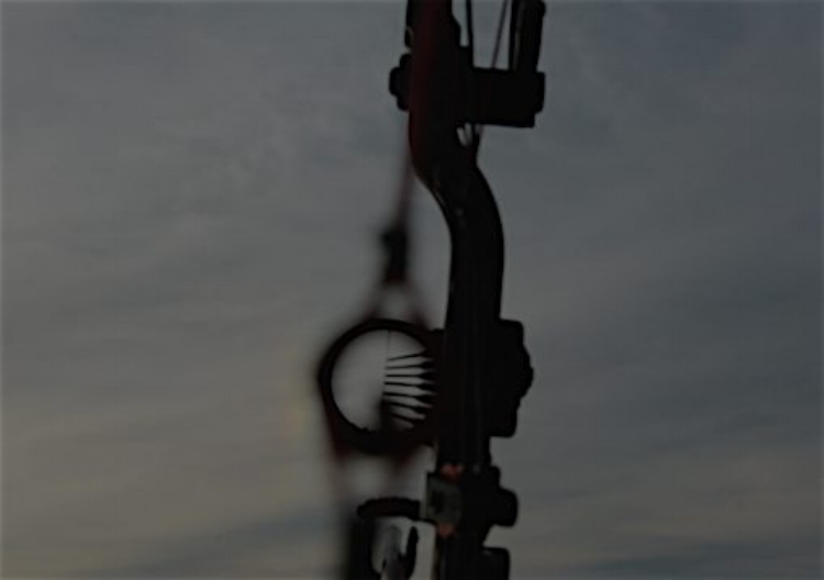 Photo of the Precision Peep sight in low light.