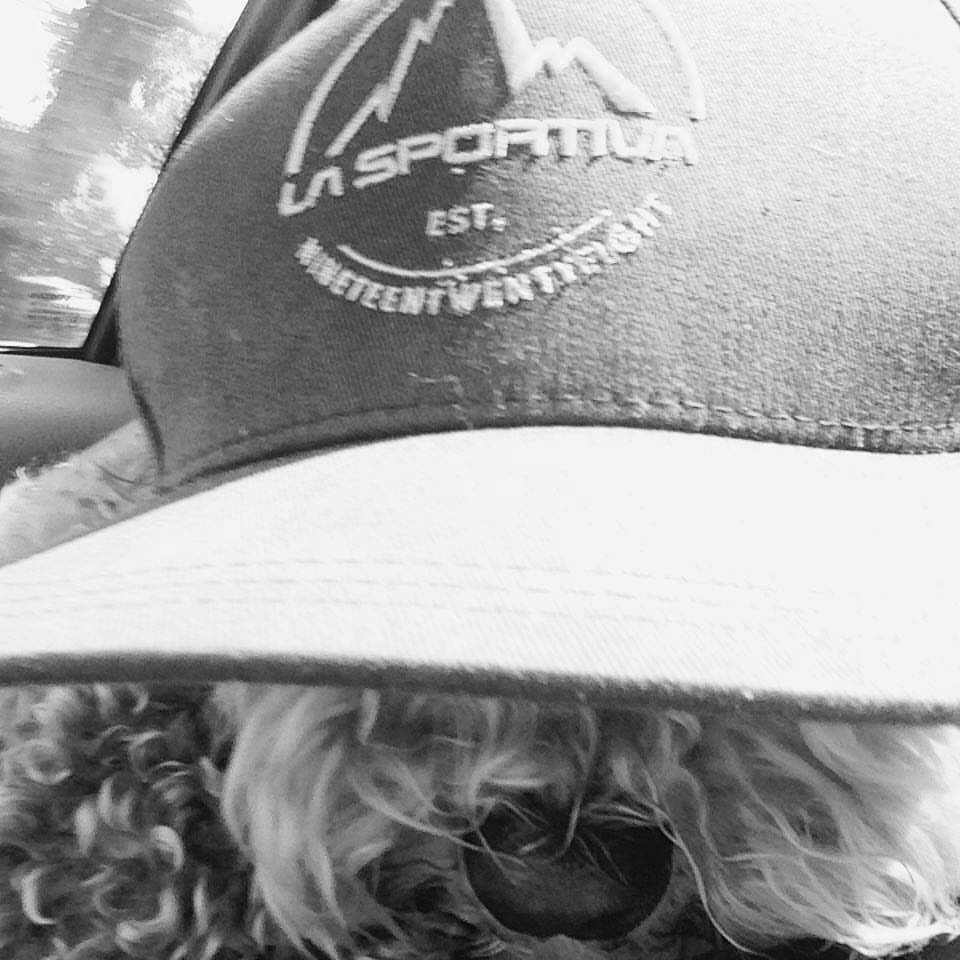 indy & hat.jpg