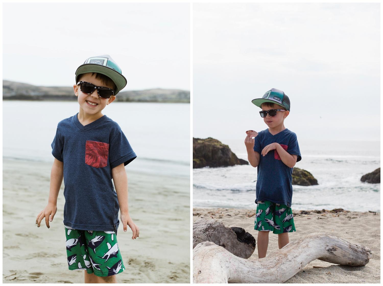 bodega bay-beach-ocean-goodforkids