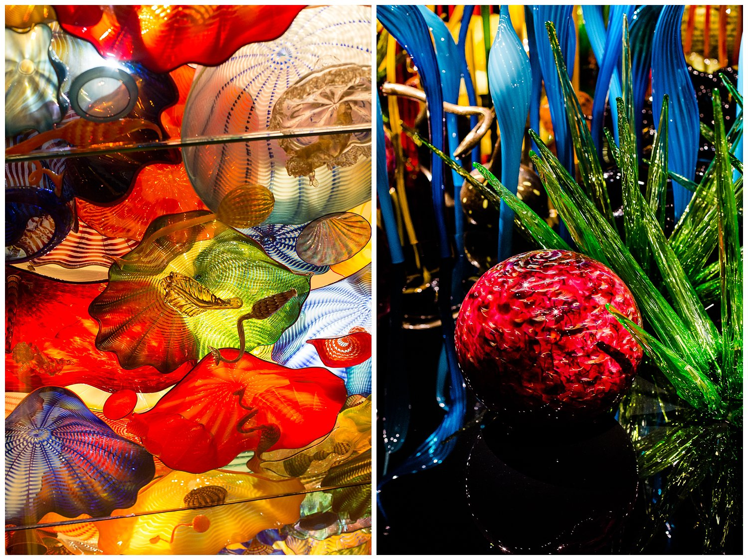 Chihuly Gardens Seattle Washington