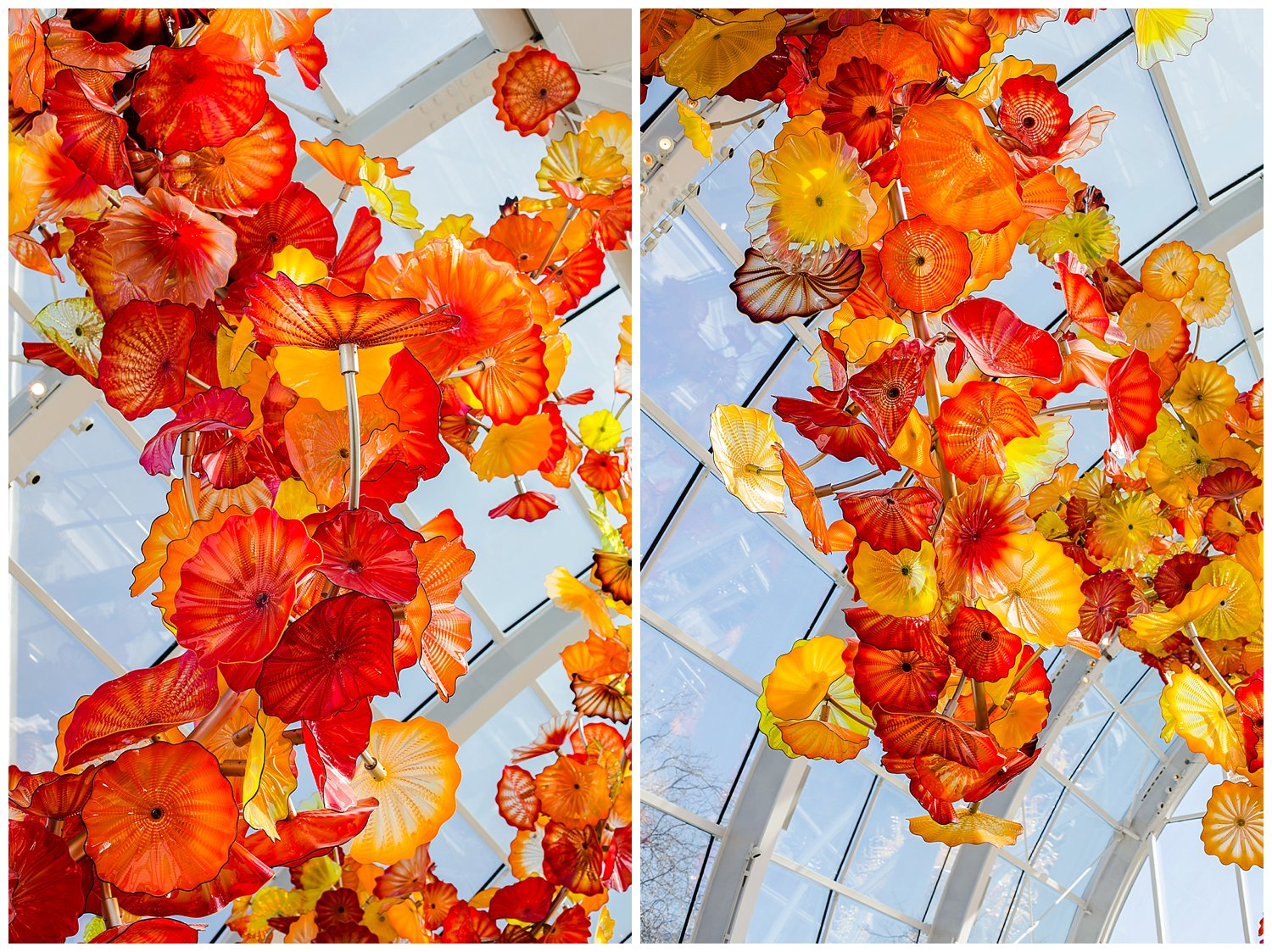 Chihuly Gardens ceiling Seattle Washington
