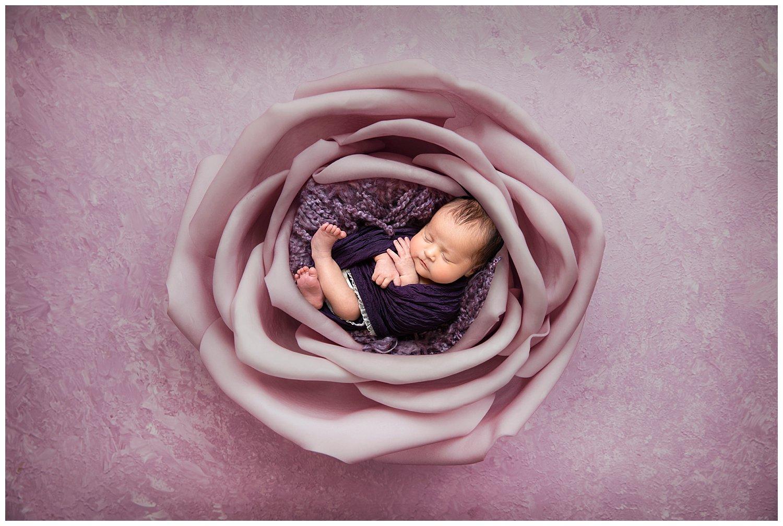 newborncompositeimage.jpg
