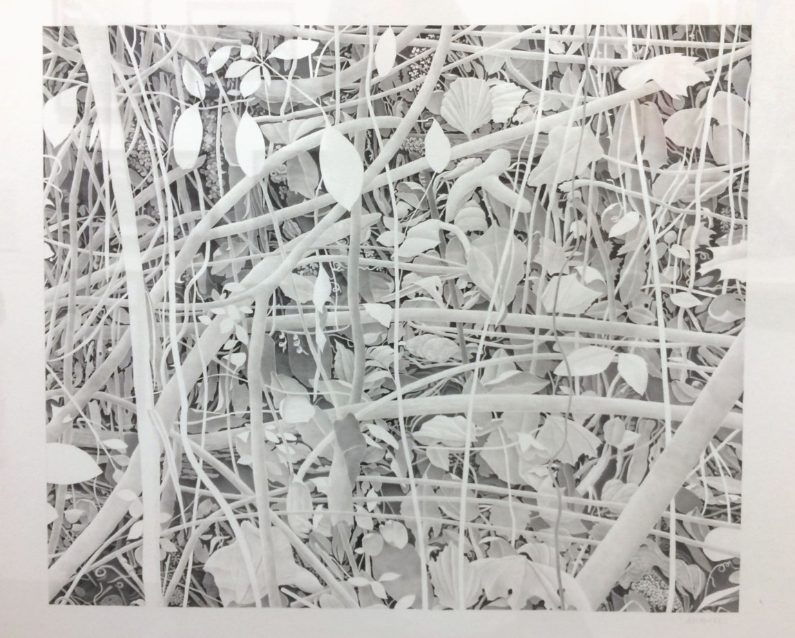 Bill Richards,  Hanging Leaves, Woven Branches , 2015, graphite on paper, Nancy Hoffman Gallery, New York, NY