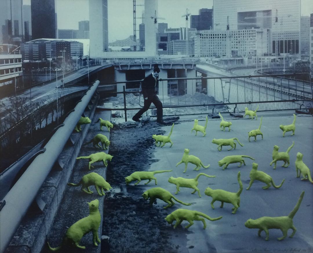 Sandy Skoglund,  Cats In Paris,  1993, Photolithograph, Yvonamor Palix Fine Arts, Houston, TX