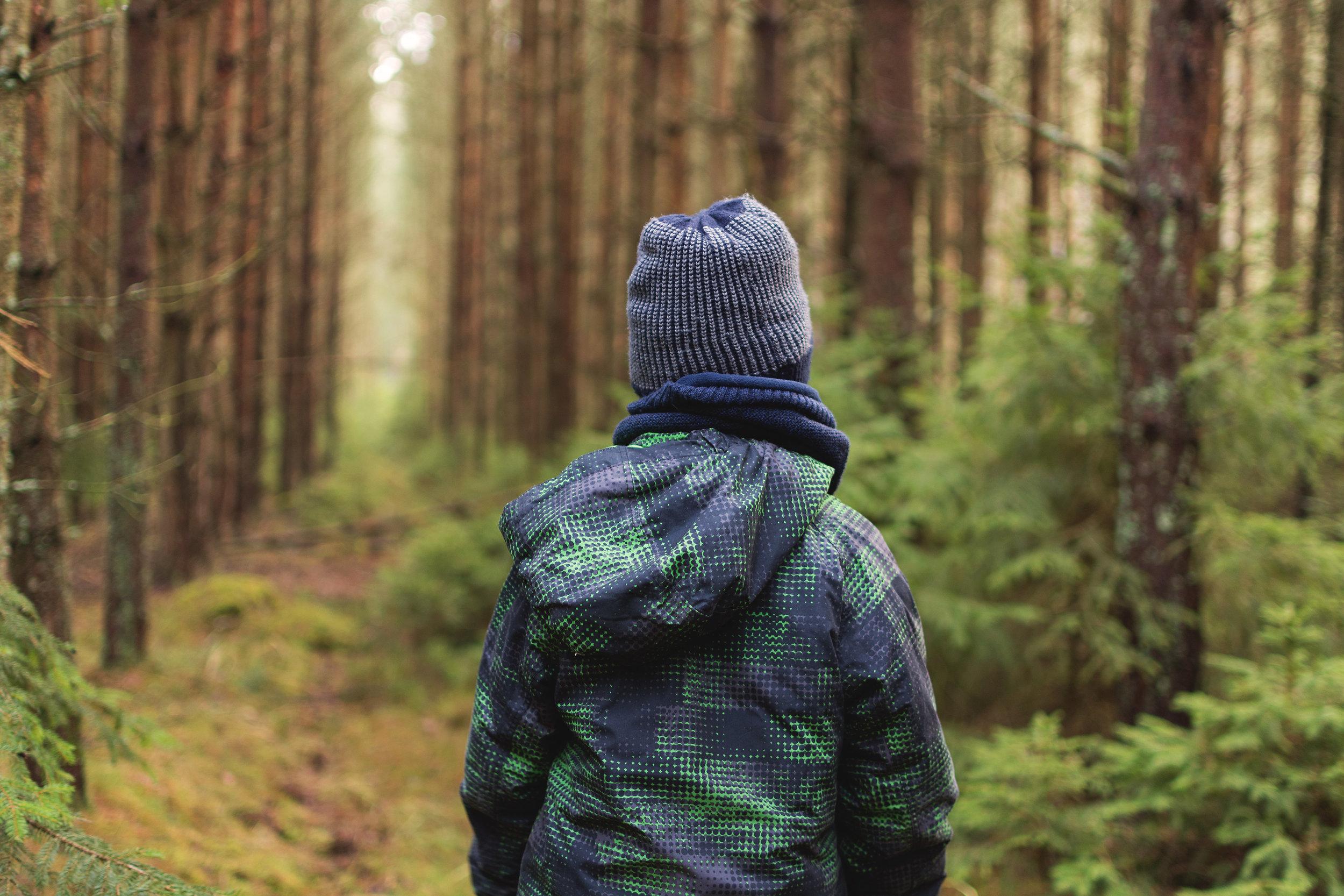 boy-in-woods.jpg
