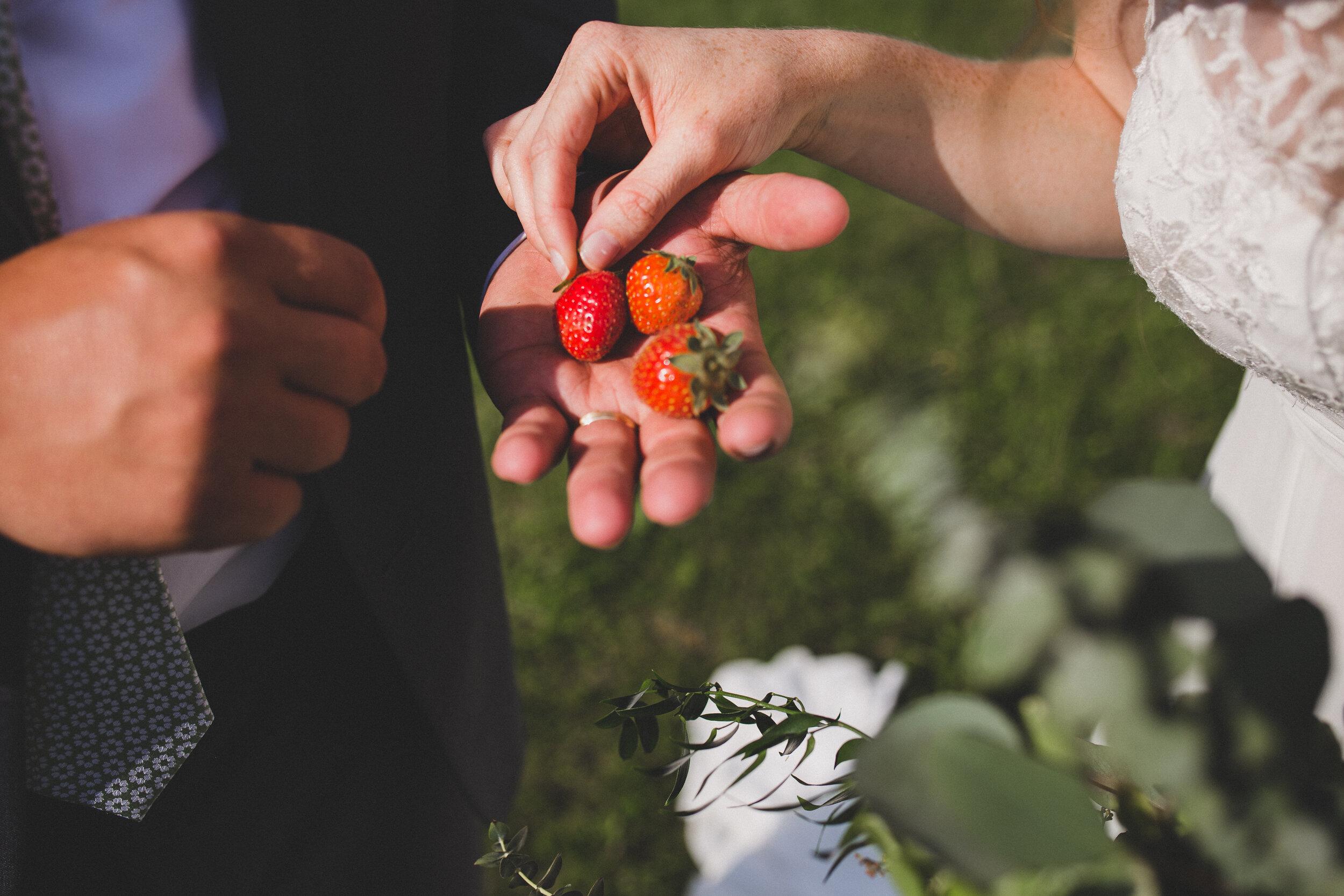 ERP_2017_Lindsey-Seth_southwest-virginia-farm-Wedding-photographer-457.jpg