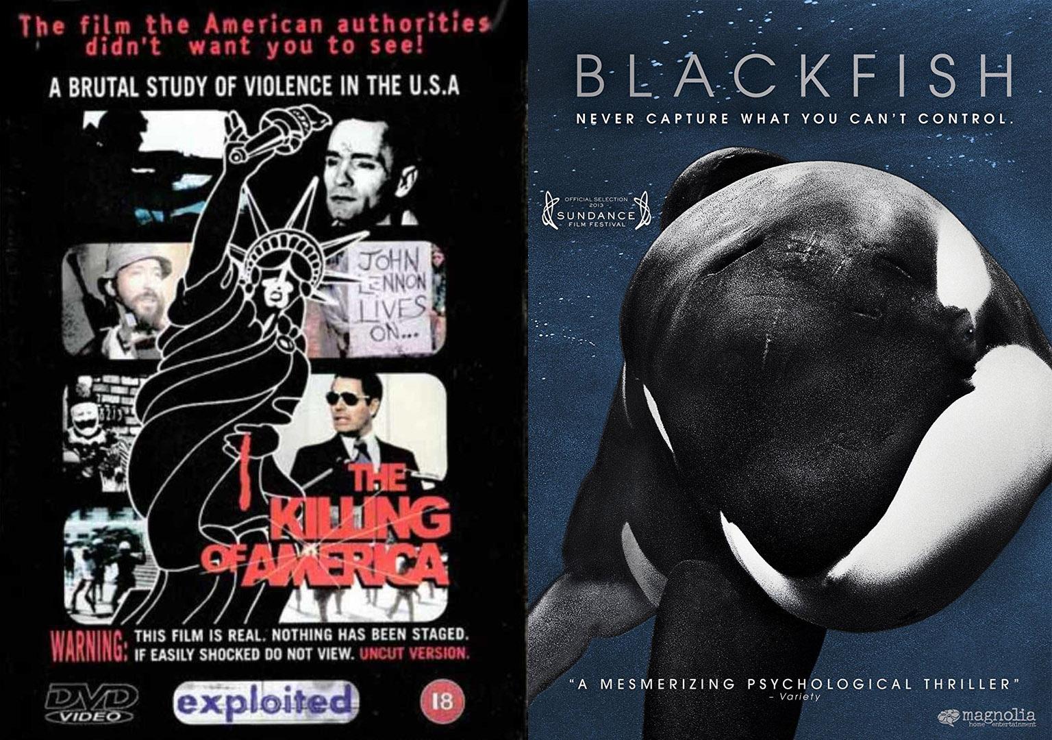 killing of america and blackfish posters.jpg
