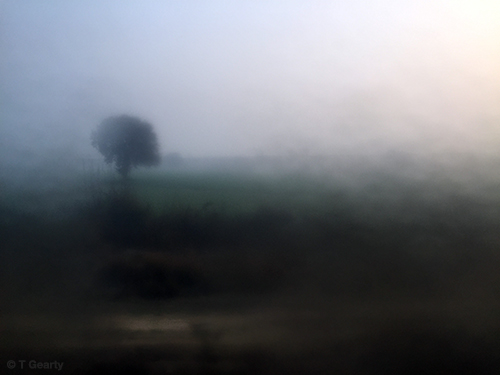 Agra #642