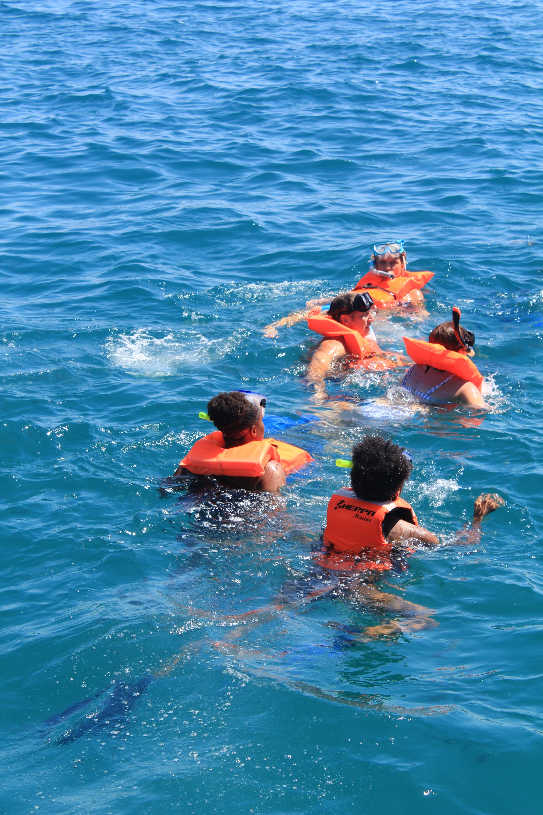We jumped off of the side of the boat into the water!!! then off we went... I saw all different kinds of Fish and they swim right up to you. it was so crazy being in the middle of the Ocean. Swimming back to the boat was rough, but it was a cool experience!!
