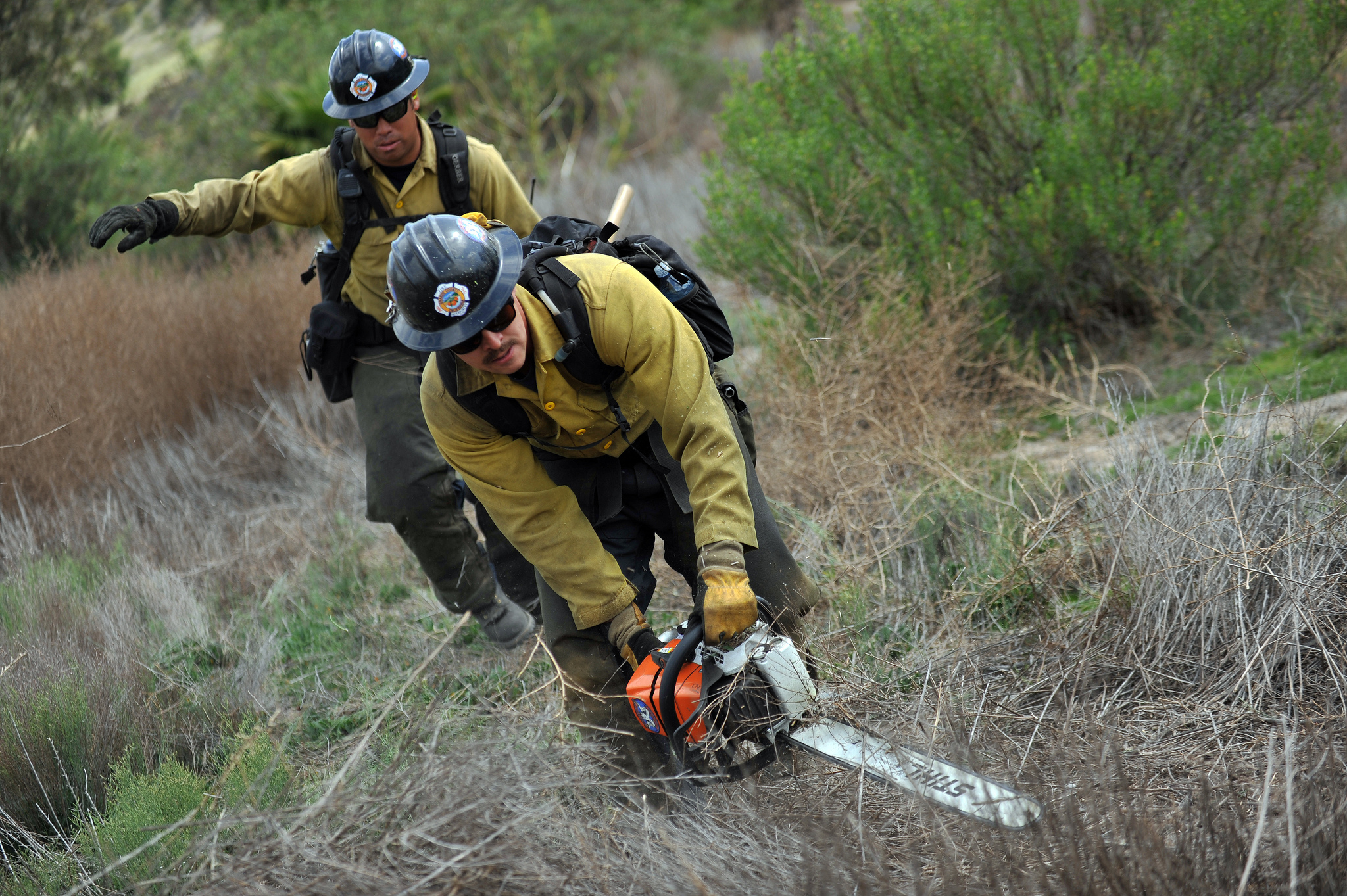 Wildland Fire Chainsaws - S-212