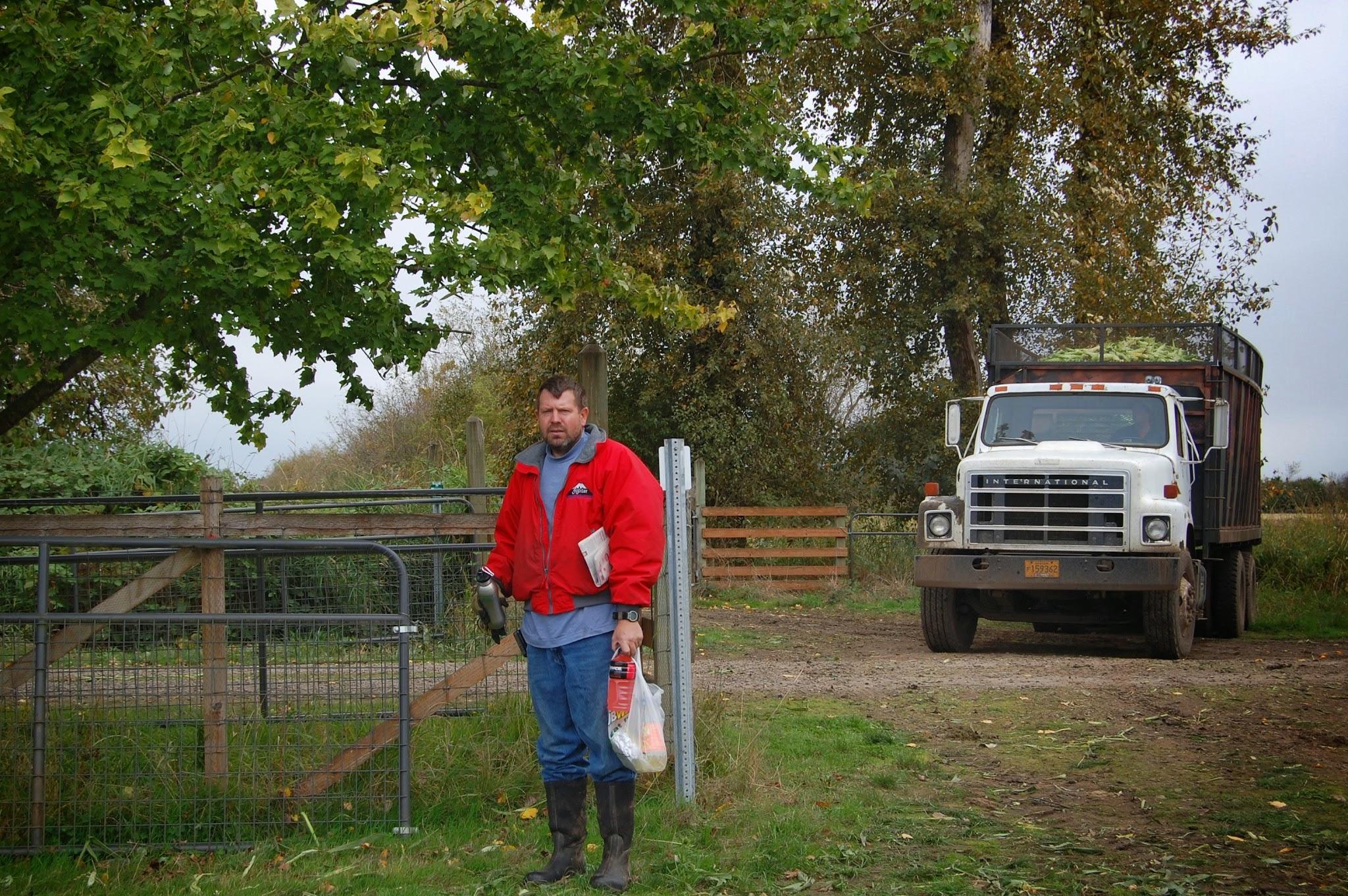 Harvesting sweet corn, October, 2011.