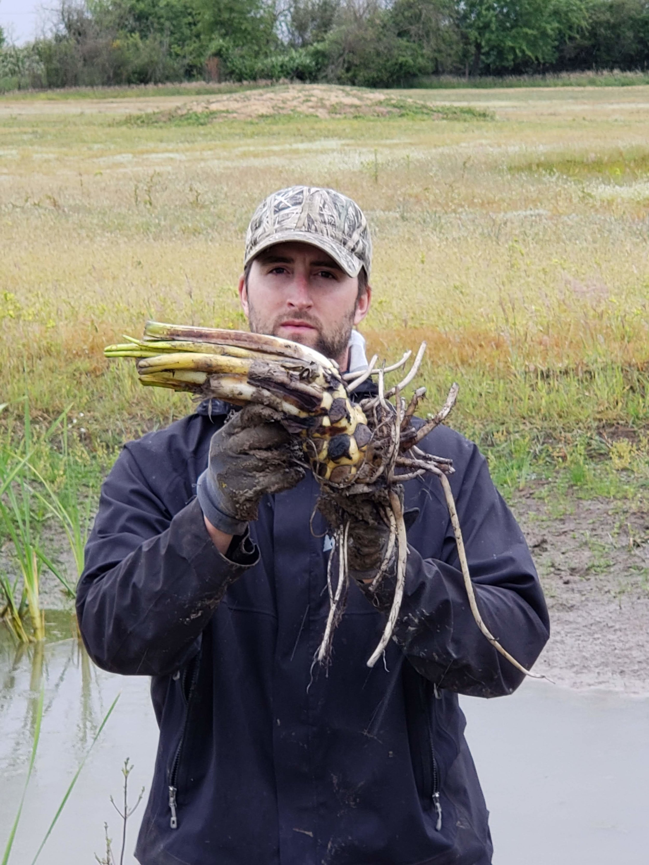 Luke holding Yellow pond lily, ( Nuphar lutea)