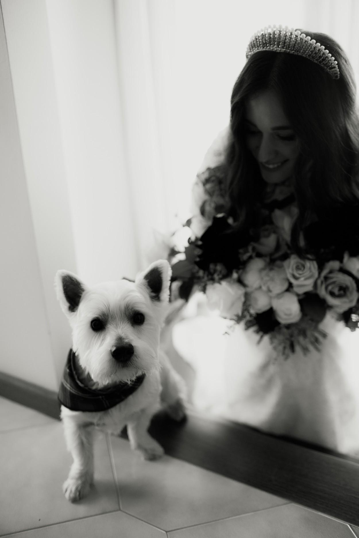 I-Got-You-Babe-Weddings-The-020George-Ballroom-St-Kilda-Wedding-Amy-Abhi.jpg
