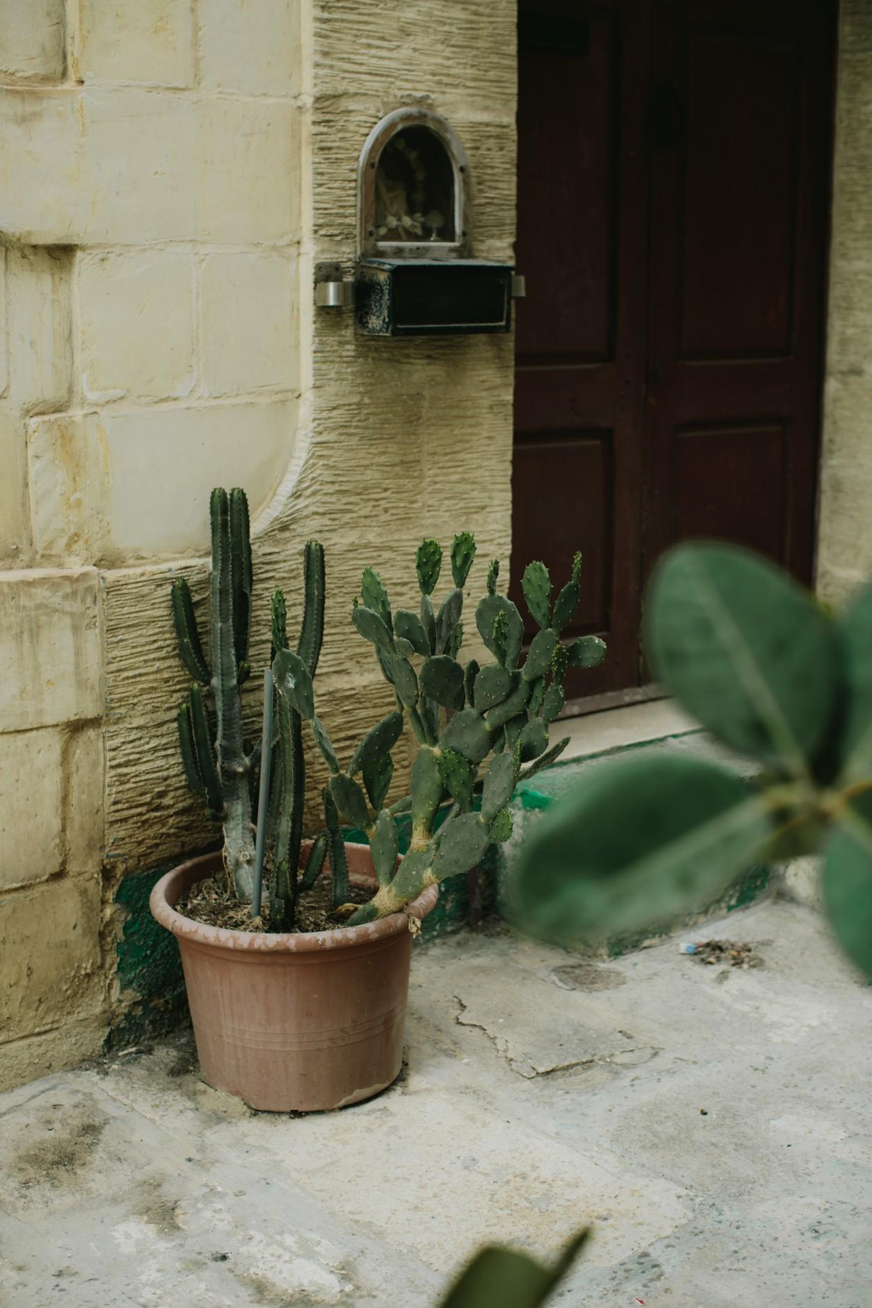 I-Got-You-Babe-Weddings-Malta-Destination-Elopement-Petra-Brent068.jpg