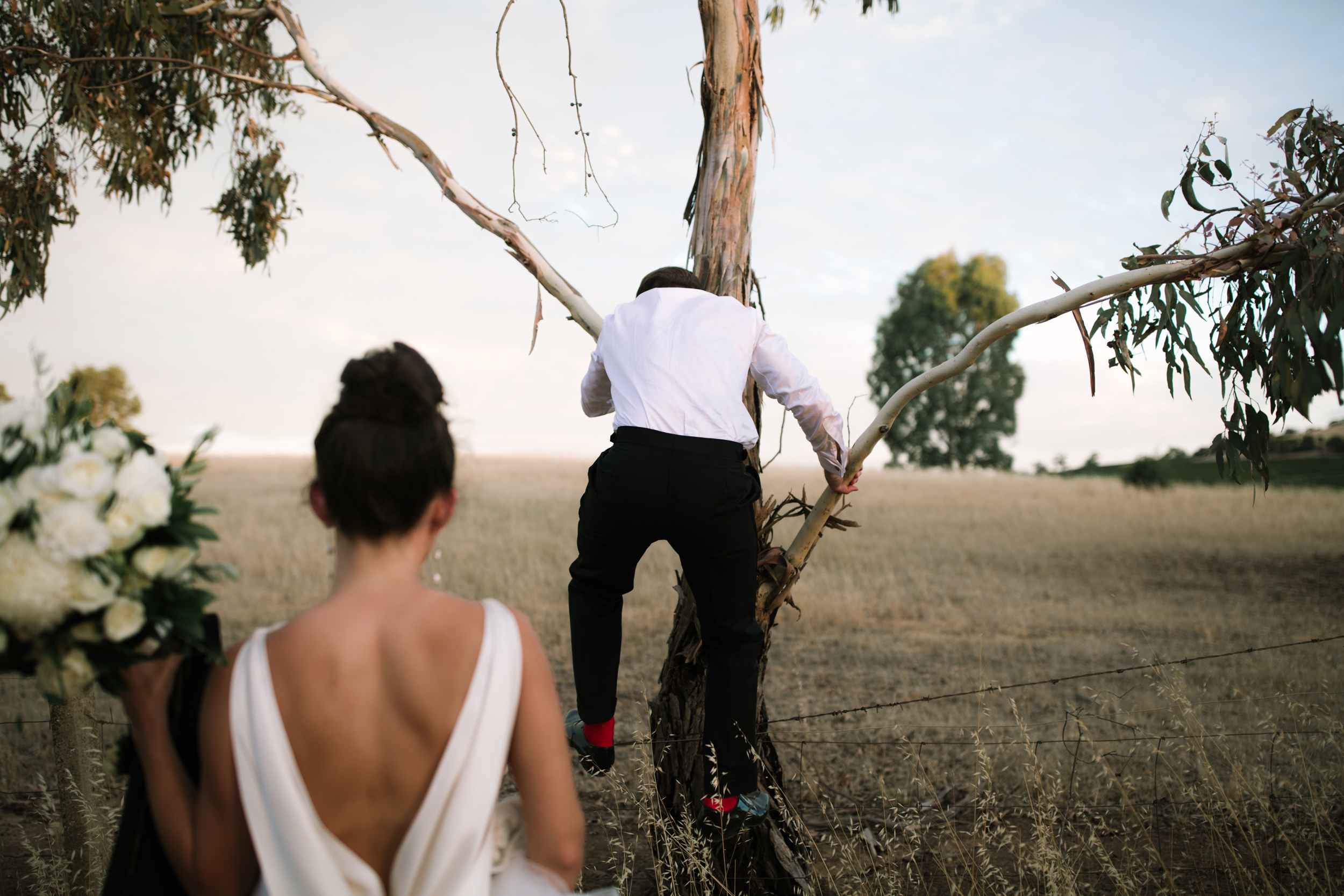 I-Got-You-Babe-Weddings-Vic-Siggy-Barossa-Valley0163.JPG
