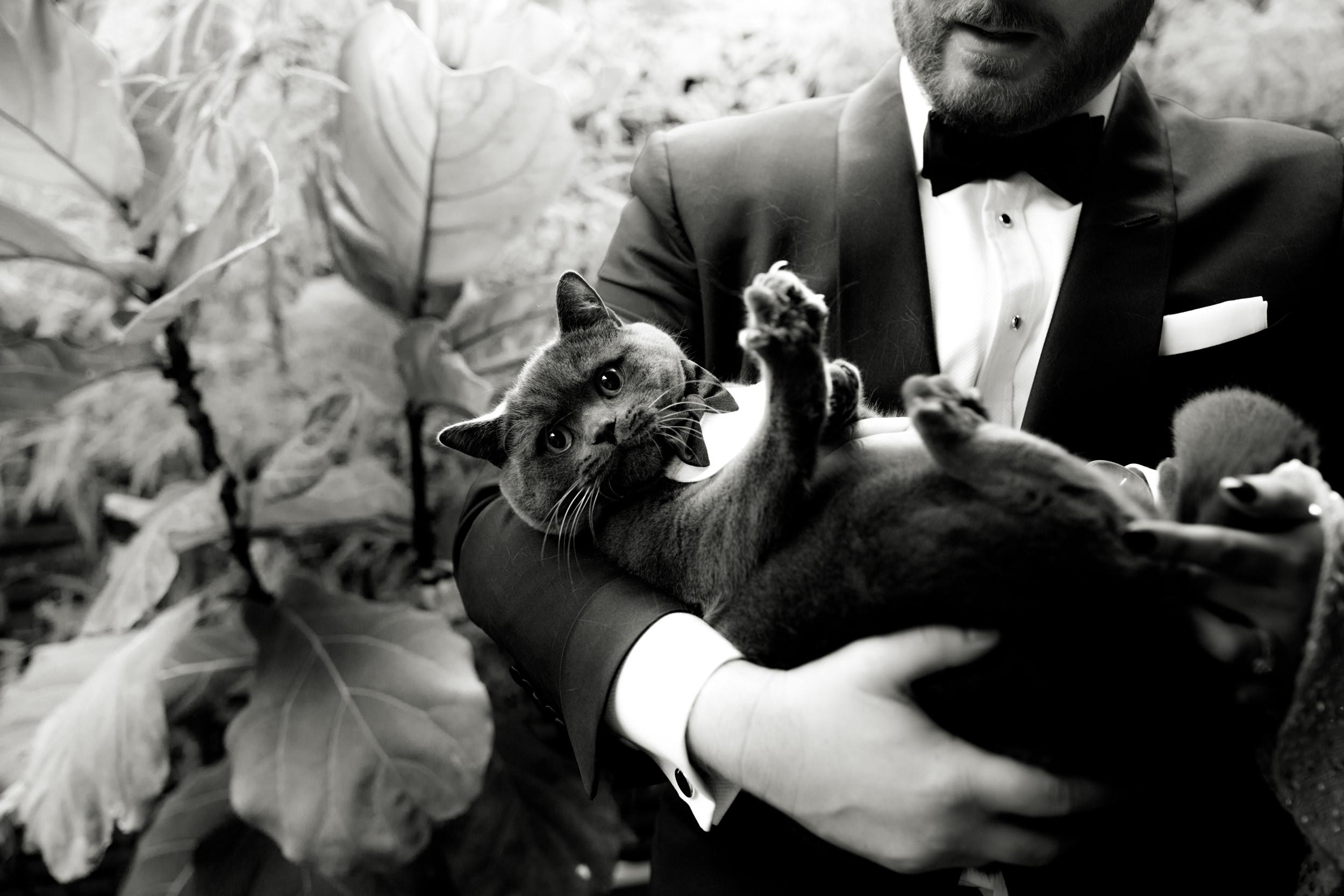 I-Got-You-Babe-Weddings-Tori-Will-Rupert0107.JPG