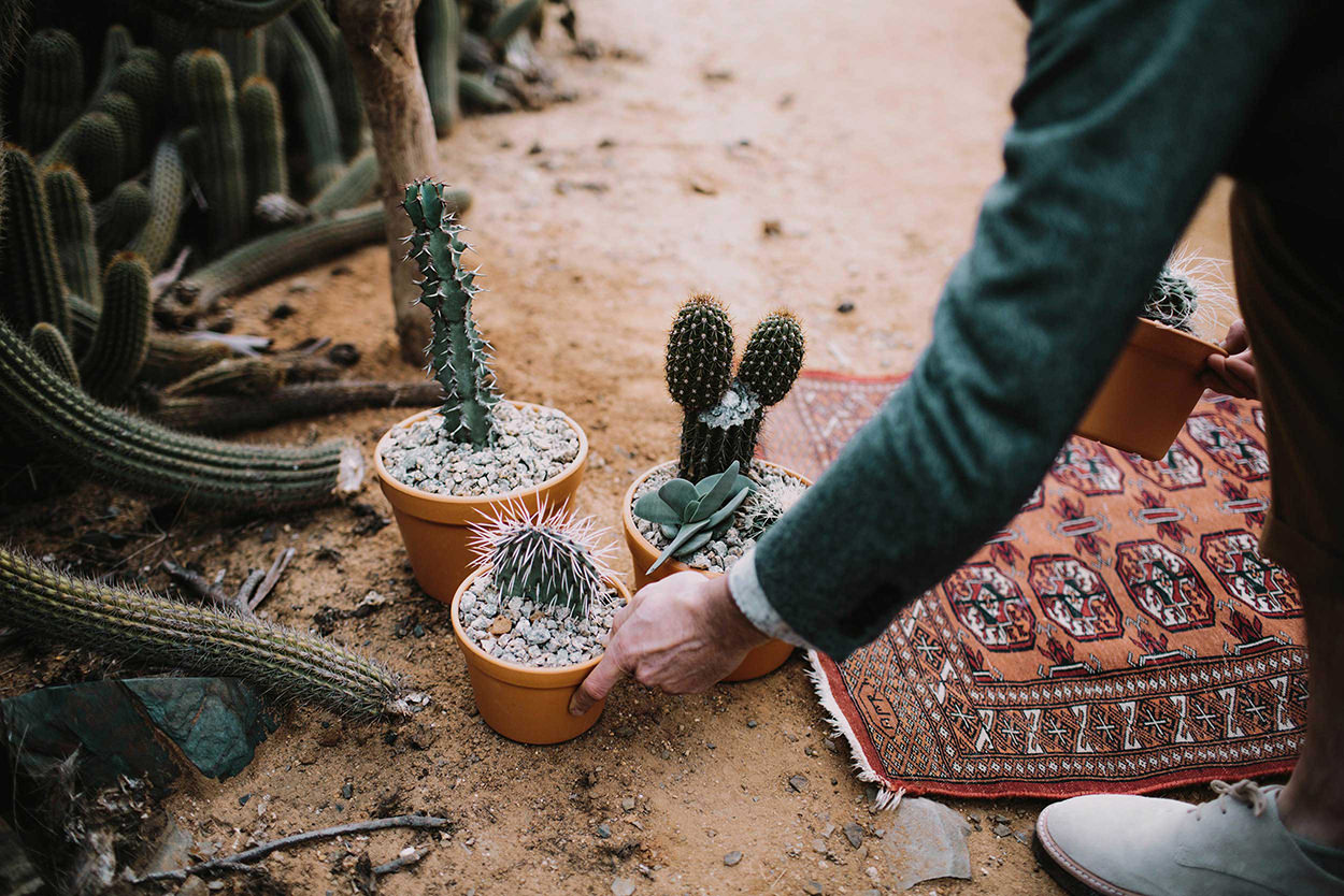 I-Got-You-Babe-Weddings-Cactus-Country-Elopement-Magali-Gabe017.jpg