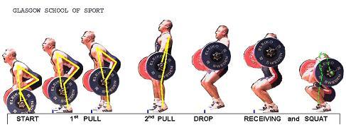 squat-clean-diagram1.jpg