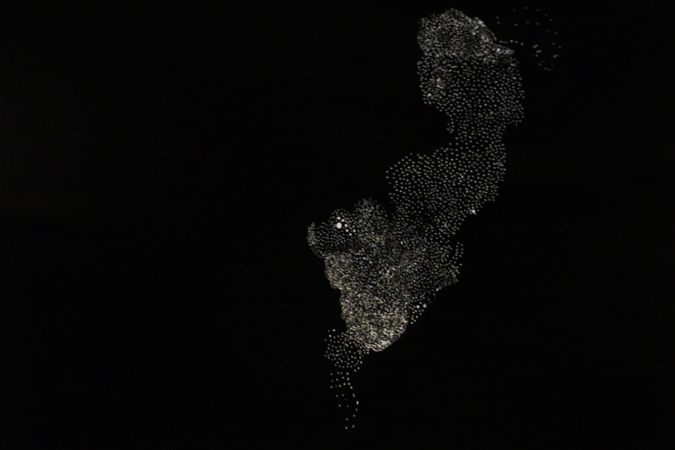 Untitled, [2014]