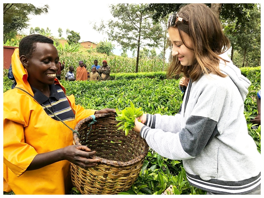 Beatrice teaches one of our team members, Leia, how to pluck the best tea leaves for maximum efficiency and quality.