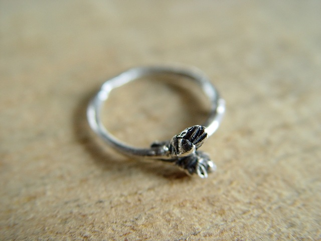 twig_ring_botanical_casting_sterling_silver.JPG