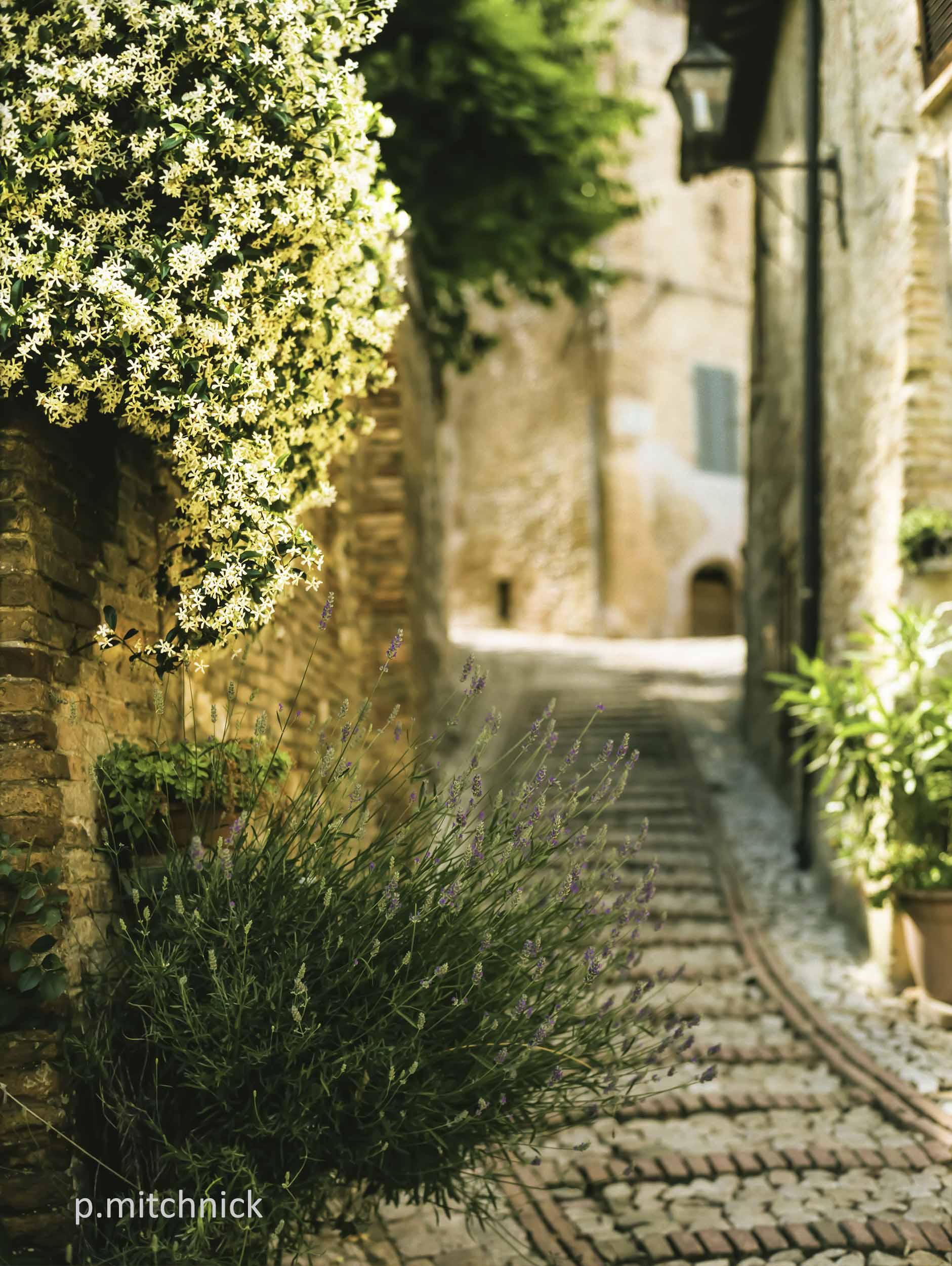 An Italian Passage