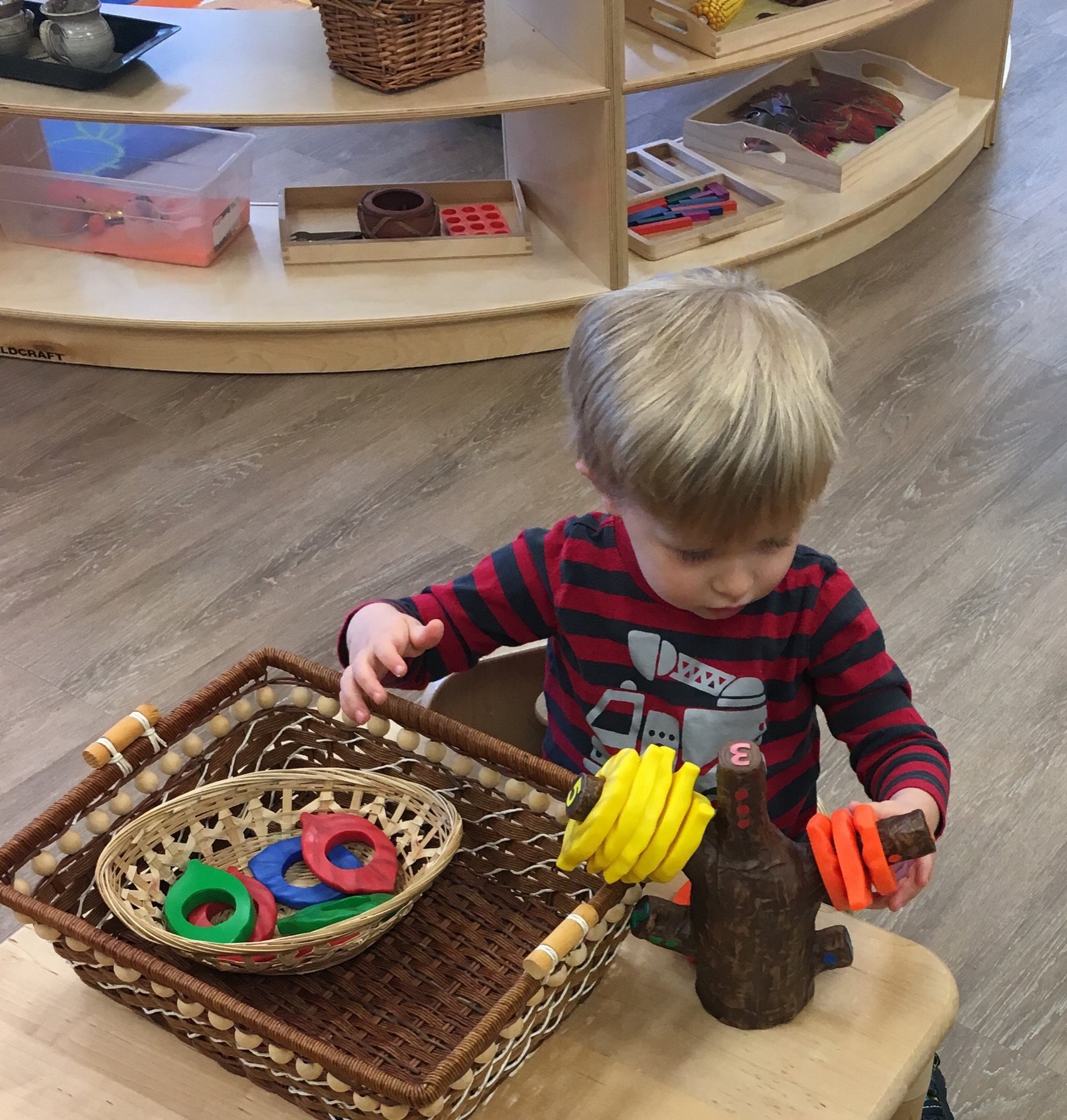 Our environment has variety to meet everyone's needs. It includes fine motor skills, language, cognitive, gross motor, sensorial, art, math, geography, and practical life.