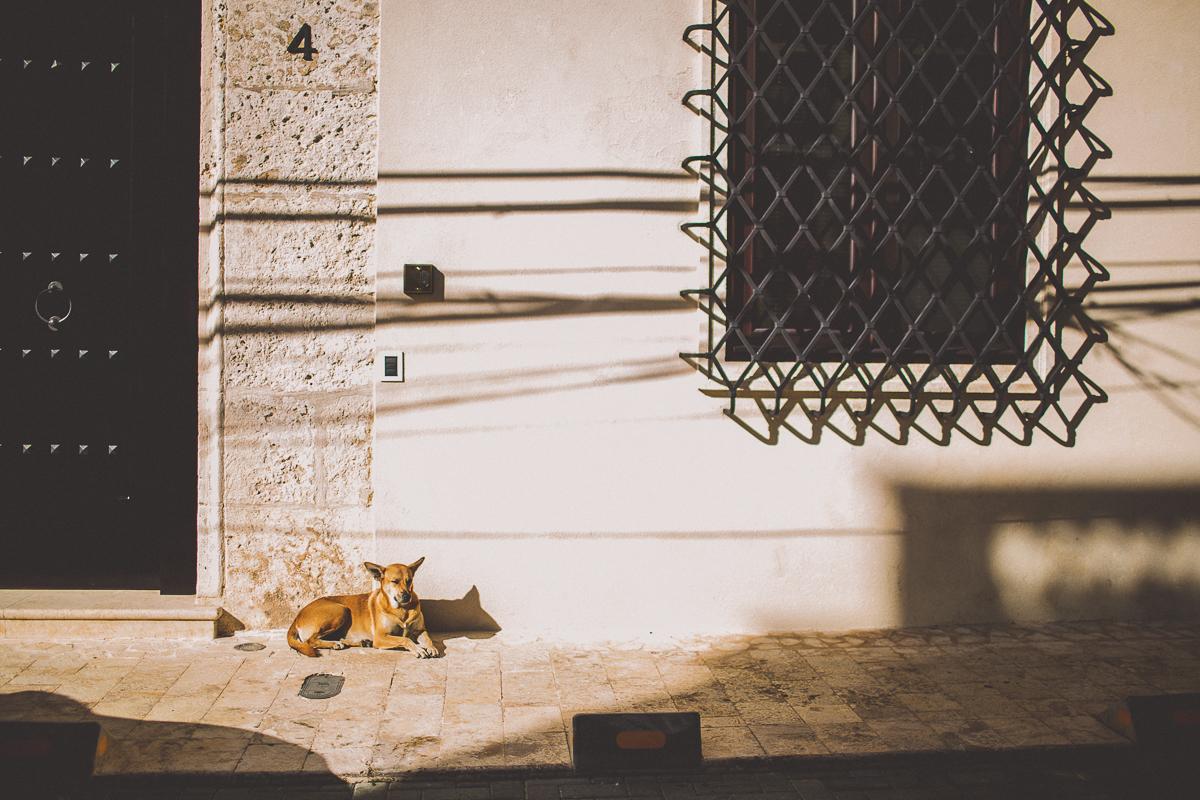 santo-domingo-kelley-raye-atlanta-lifestyle-photographer-4.jpg