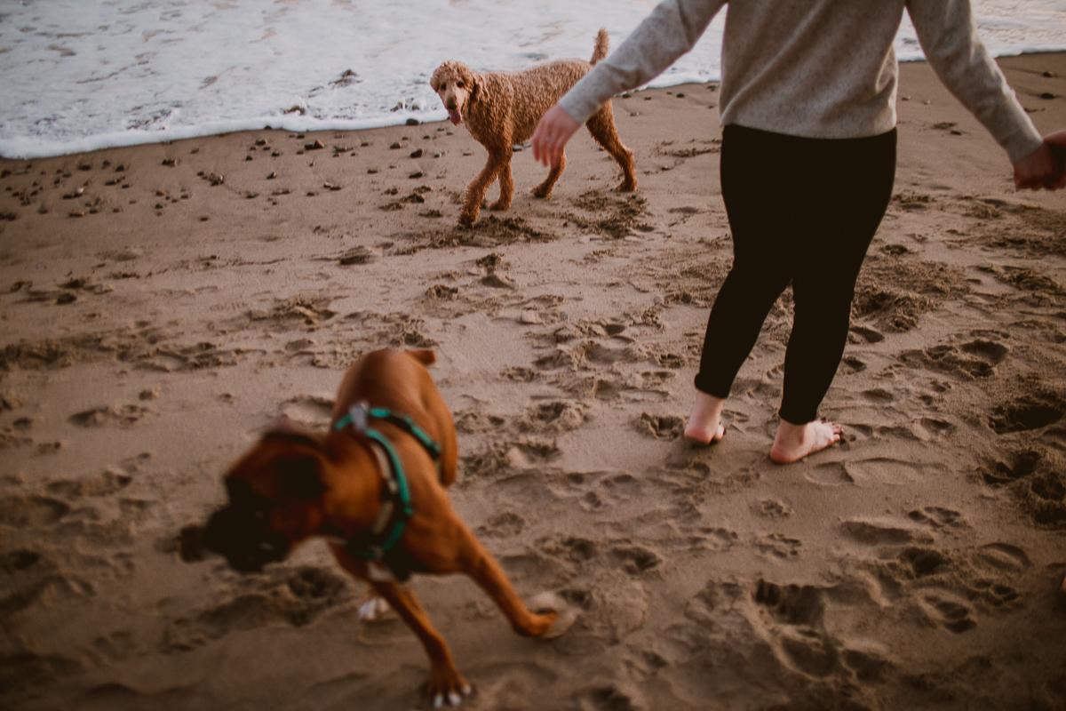 malibu-carbon-beach-engagement-session-kelley-raye-los-angeles-lifestyle-photographer-144.jpg