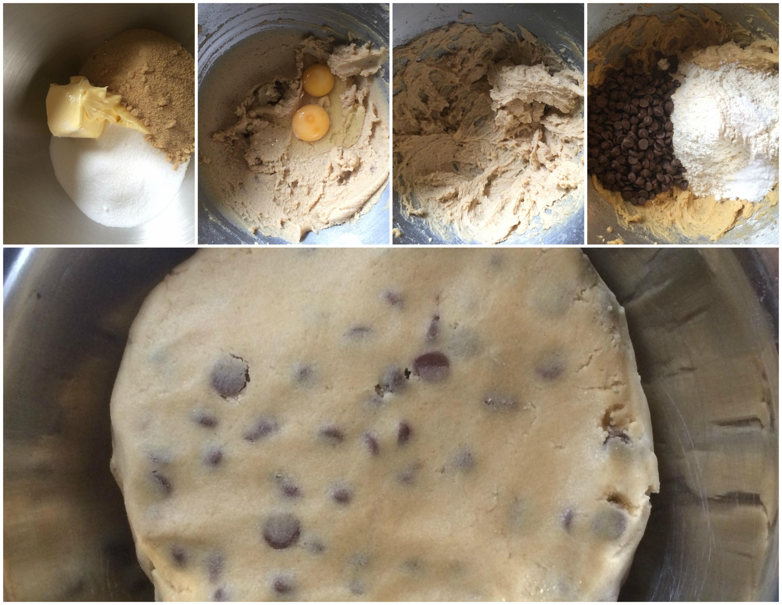 Brookie Chocolate Chip Cookie and Brownie