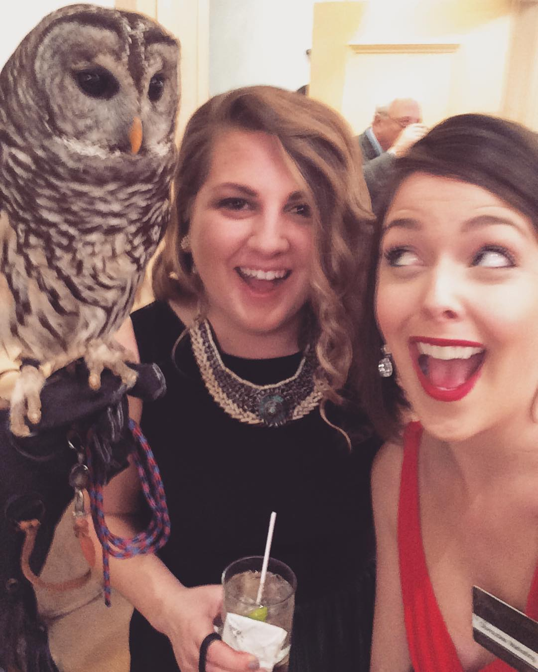 Sometimes you put on a ball gown and hang with an owl. #SEWE2016 #omwerkperks