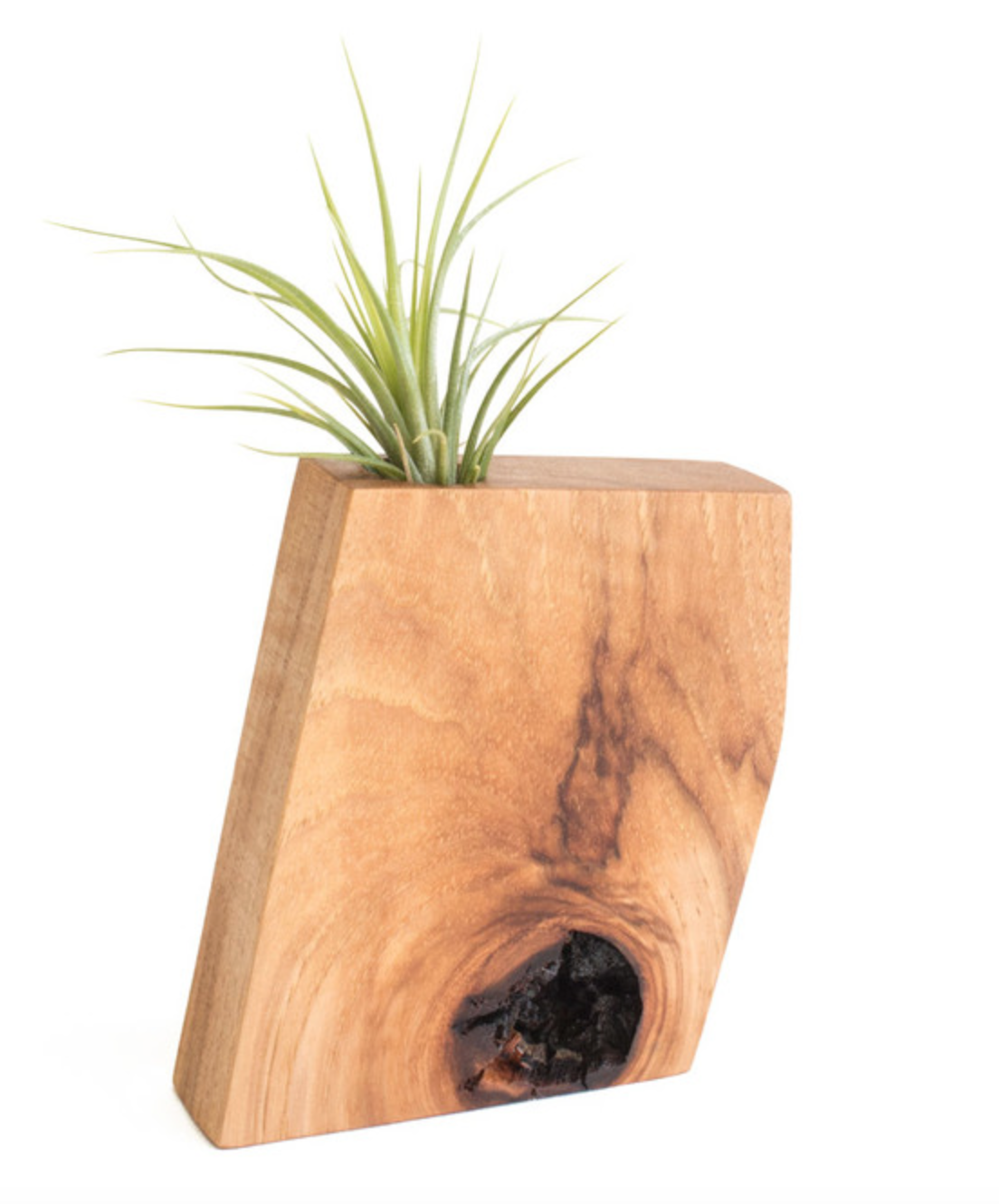 Wooden Air Plant Holder, Hickory