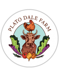 Plato Dale Farm  raises grass-fed Jersey steers for beef, free-range chickens, and sustainably farmed vegetables.  We love our animals and they are cared for the best we know how.