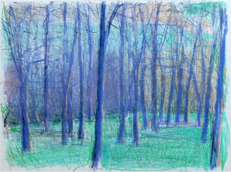 Purple Grove II