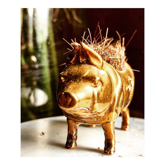 What every guy needs: an engagement pig. This particular pig is a 19th C. Brass and Boar bristle quill cleaner, as my guy is partial to using fountain pens. To each his own. #brasspig #antiquefind #engagementpig