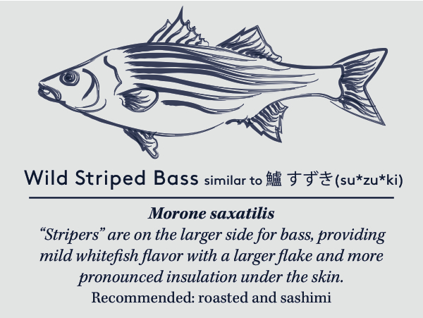 stripercard copy (1).jpg