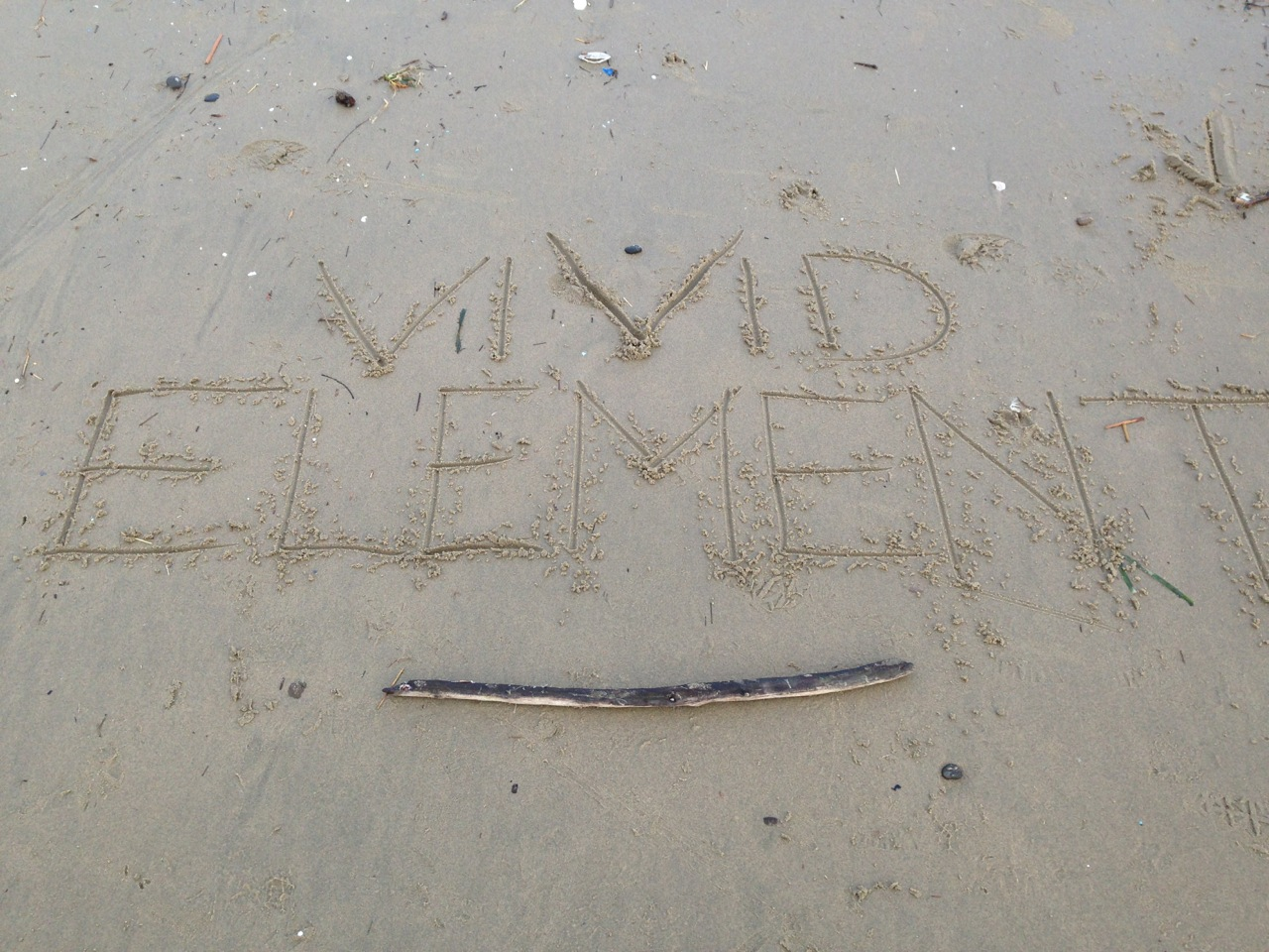The first time we wrote Vivid Element at our re-branding beach retreat.