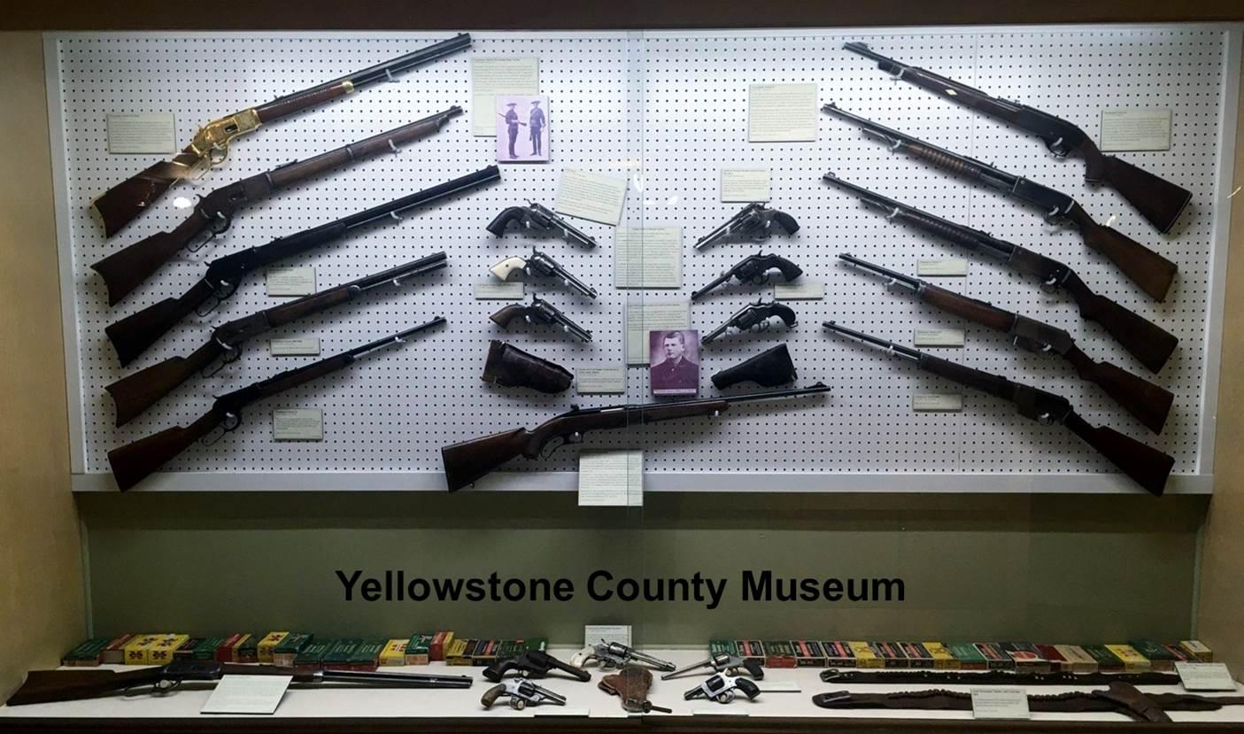 11 Firearms.jpg
